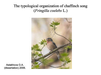 The typological organization of chaffinch song +
