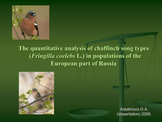 The quantitative analysis of chaffinch song