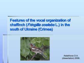 Features of the vocal organization of chaffinch in the south of Ukraine (Crimea)