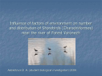 Influence of factors of environment on number and distribution of Shorebirds (Charadrii)