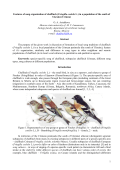 Song organization of chaffinch in Ukraine (Crimea)