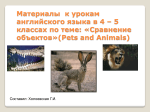 Task: Can you compare animals