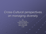 Topic 9: A cross-cultural perspective on managing diversity