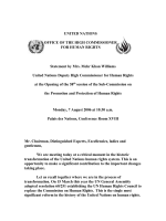 The UN Summit And Human Rights Reform: How To Advance The