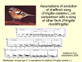 Assumptions of evolution of chaffinch song (Fringilla coelebs L.) +