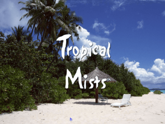 Tropical Mists новинки