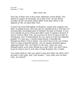 New York City Short Essay