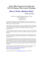 How to Write a Business Plan - Overseas Chinese-American