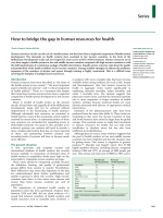Series How to bridge the gap in human resources for health - Equinet