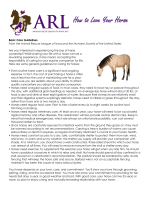 How to Love Your Horse - Animal Rescue League of Iowa
