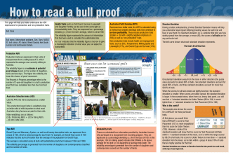 How to read a bull proof - Semark