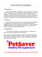 How to Set Up an Aquarium - Pet$aver Healthy Pet Superstore