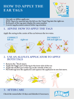 How to apply tHe ear tags