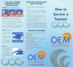 How to Survive a Tsunami
