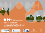 How to create an ecologically healthy stream - CRC for Water