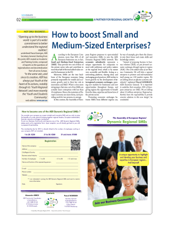 How to boost Small and Medium-Sized Enterprises? - Pascal Goergen