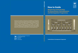 How to Guide - UNDP