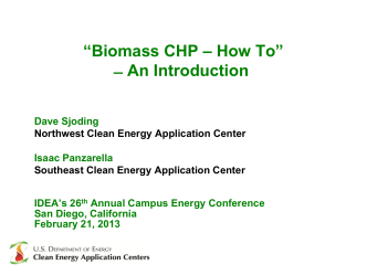 """Biomass CHP – How To"" ̶ An Introduction"