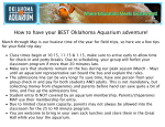 How to have your BEST Oklahoma Aquarium adventure!