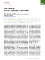 The Joy of Six: How to Control Your Crossovers - Cell