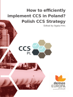 How to efficiently implement CCS in Poland? Polish CCS - Home.pl