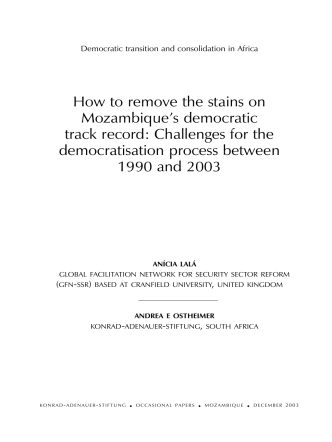 How to remove the stains on Mozambiques democratic - AfriMAP