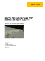 How to Remove Sidewalk Trip hazards on tight Budgets - Precision