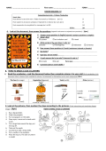 B- HOW TO MAKE A JACK-O-LANTERN 1) Read the - WebAnglais