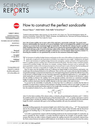 How to construct the perfect sandcastle - ScienceOpen