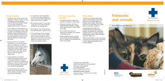 Fireworks and animals - how to keep your pets safe