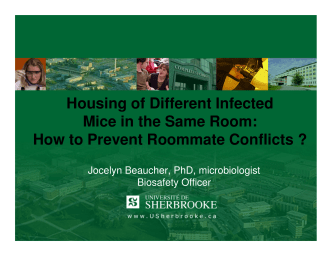 Housing of Different Infected Mice in the Same Room: How to