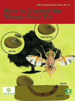 How to Control the Mango Fruit Fly