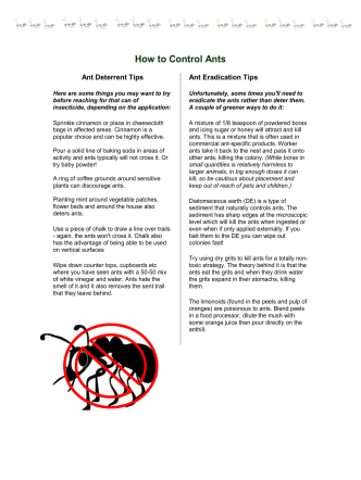 How to Control Ants - Sylvan Summer Villages
