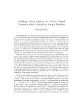 Doubling a Path Algebra, or: How to extend Indecomposable