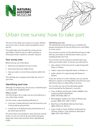 Urban tree survey: how to take part - Natural History Museum