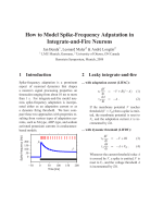 How to Model Spike-Frequency Adpatation in Integrate-and - LMU